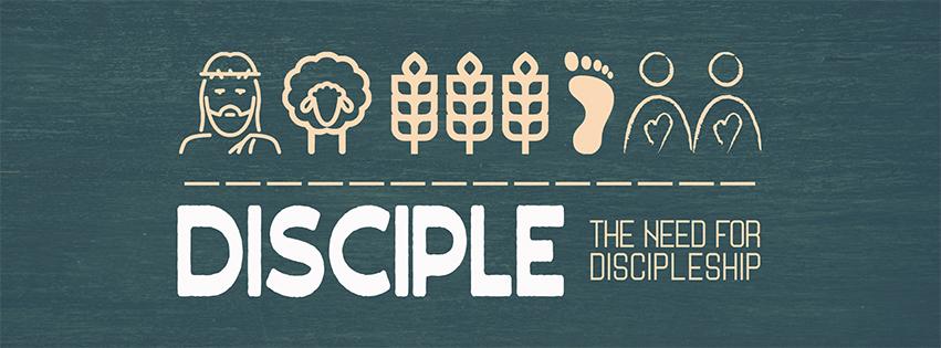 Discipleskip